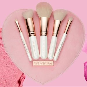 🆕 PERFECT CHRISTMAS GIFT 5-Piece Brush set💖 R/P
